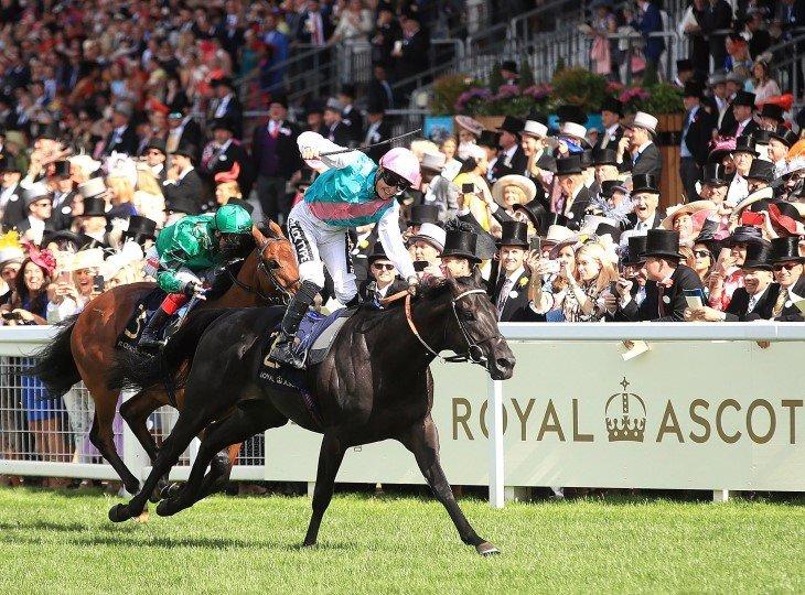 Королевские скачки Royal Ascot ежегодно привлекают 650 миллионов телезрителей