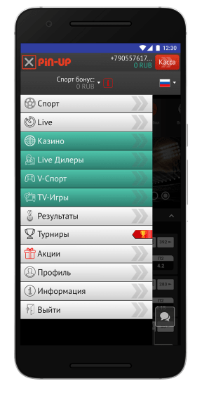 screen-pin-up-bet-7