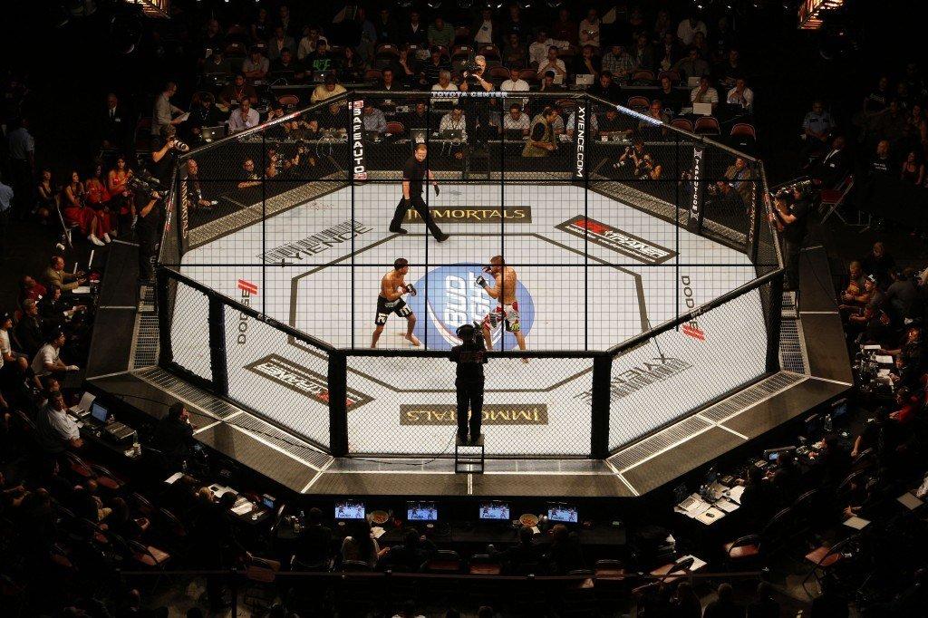Самые высокооплачиваемые бойцы за всю историю UFC