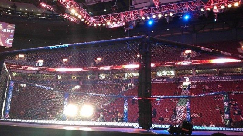 UFC Fight Night 171. Энтони Смит — Гловер Тейшерйра. Где смотреть бой