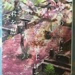 【ブックレビュー】最後の医者は桜を見上げて君を想う(二宮敦人)