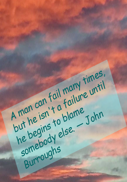 John Burroughs on Failures