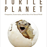 Booksellers Recommend: Turtle Planet