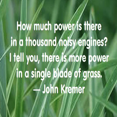 the power of grass