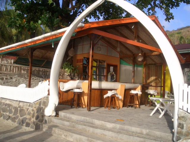 Whale_Bequia_Stvincent_Grenadines