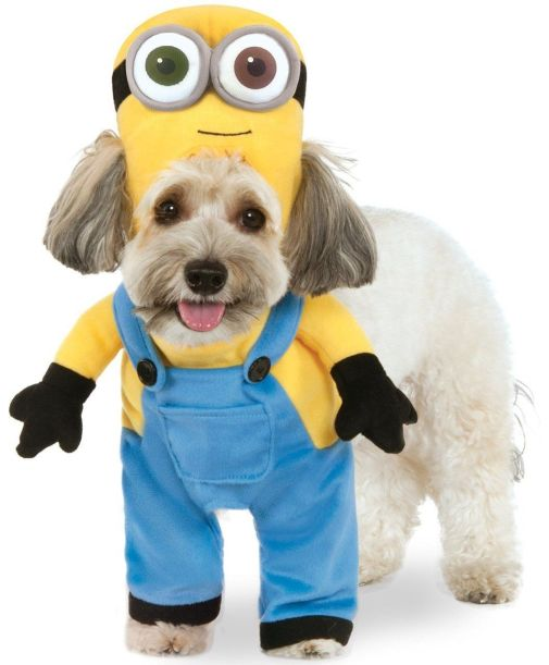 Minion Theme Dog Costume Ideas