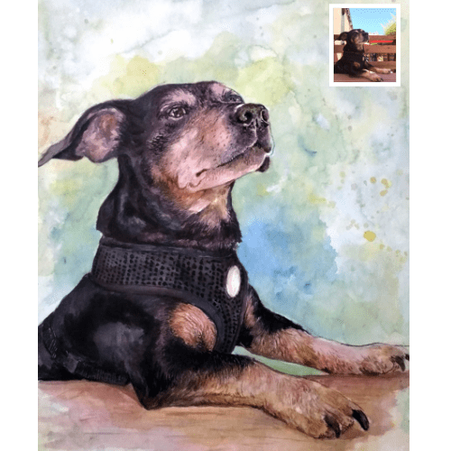 Pet Watercolor Portrait from Photo