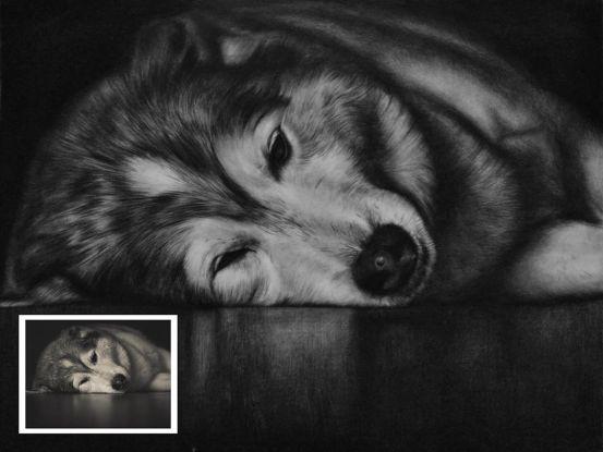 Why Handmade Dog Painting?