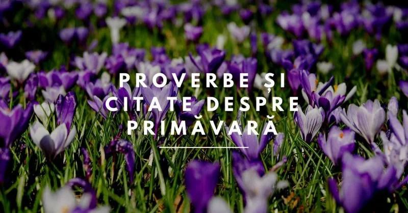 Proverbe și citate despre Primăvară