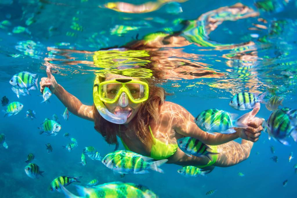 Cabo-Snorkeling-Tour
