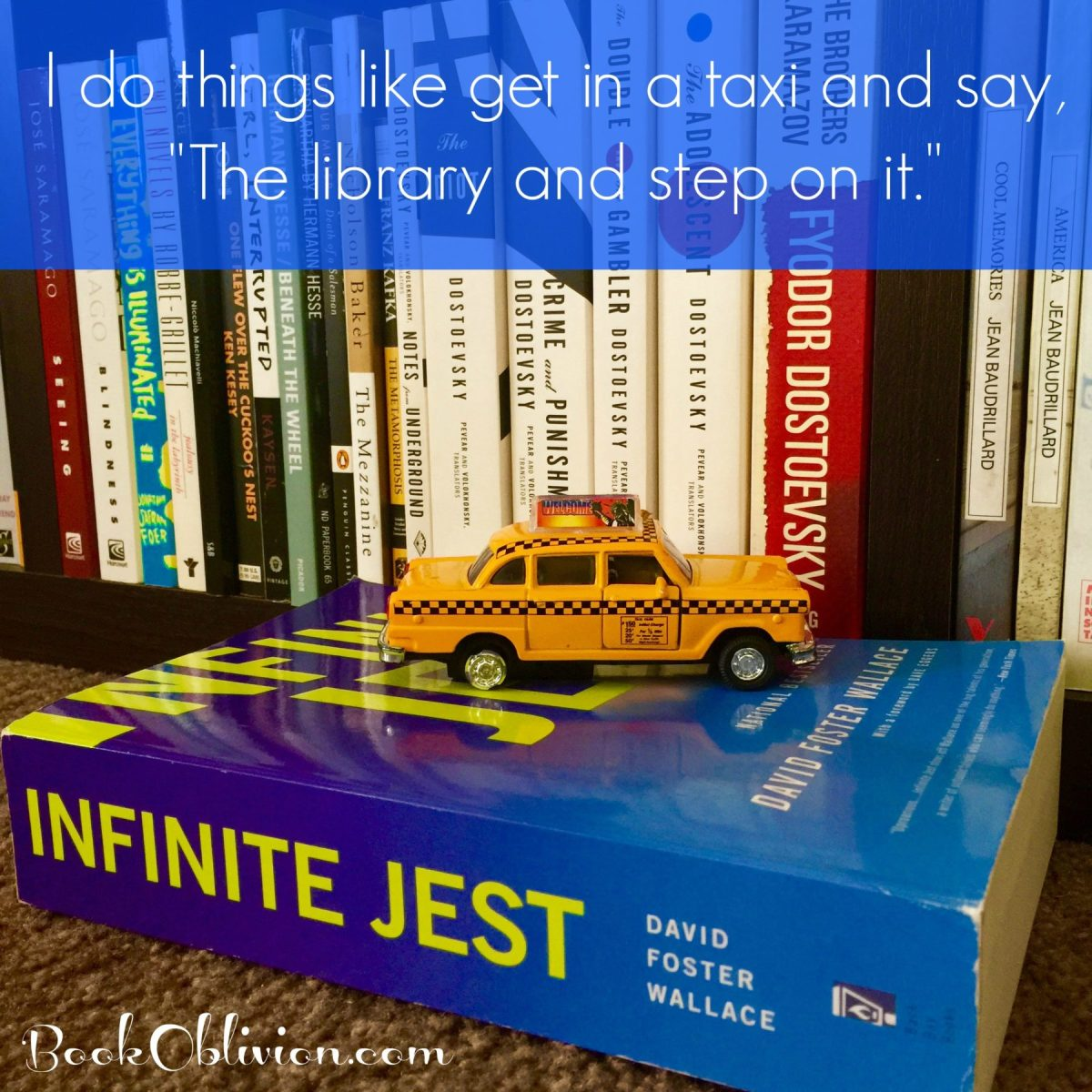 I Consume Libraries - Infinite Jest Inspiration