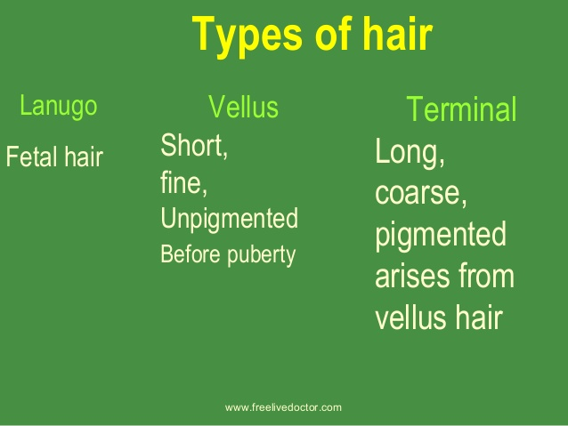 Three Types of Natural Human Hair