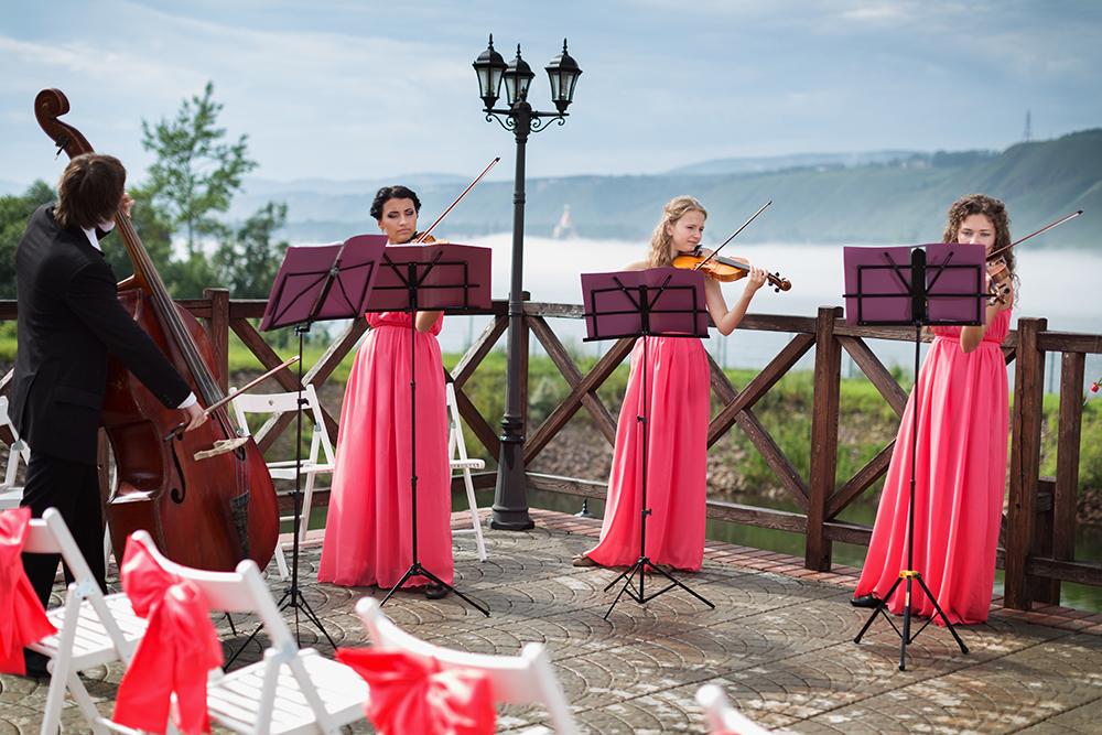 wedding-entertainment-strings