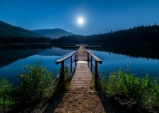 Night, How Beautiful You Are! | Bookosmia