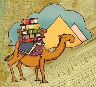Girouard Camel