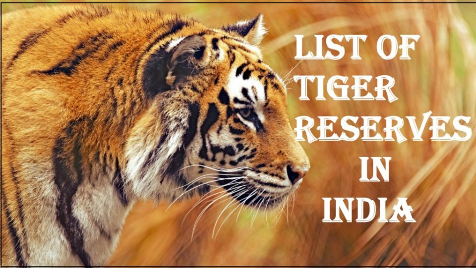 List of Tiger Reserves in World Notes 2021