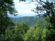 Great Smokey Mountains National Park Free Use
