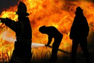 Fire & Firemen Free Use