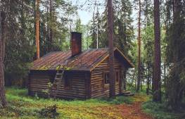 cabin-in-woods-free-use-copy