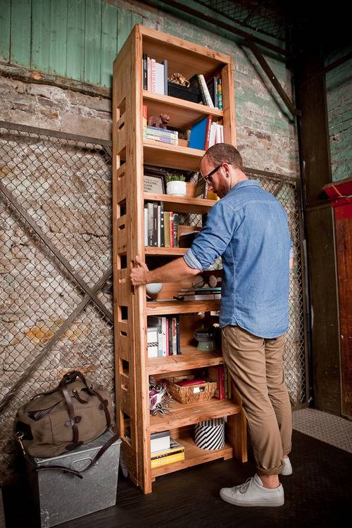 bookcase ladder 2