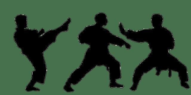 karate world champion success