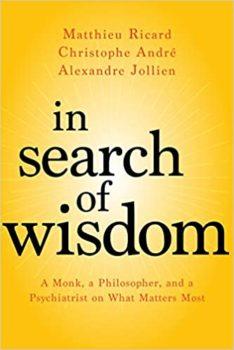 In Search of Wisdom - Christophe André,Alexandre Jollien,Matthieu Ricard