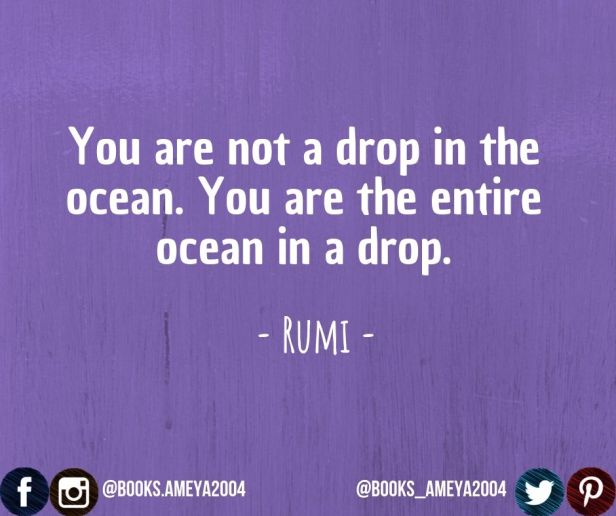 'You are not a drop in the ocean. You are the entire ocean in a drop.' ~ Rumi