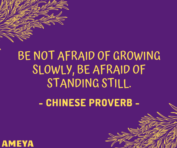 Be not afraid of growing slowly, be afraid of standing still. – Chinese proverb