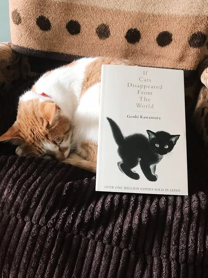 japanese literature if cats disappeared