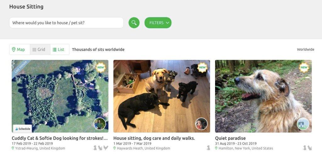 Pet Sitting guide Housesitting