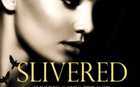 Slivered By Kandi Vale – A Book Review
