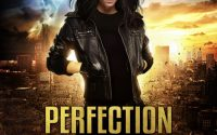 Perfection Unleashed by Jade Kerrion – A Book Review