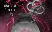 Chaos Unlocked by Lana Kole – A Book Review