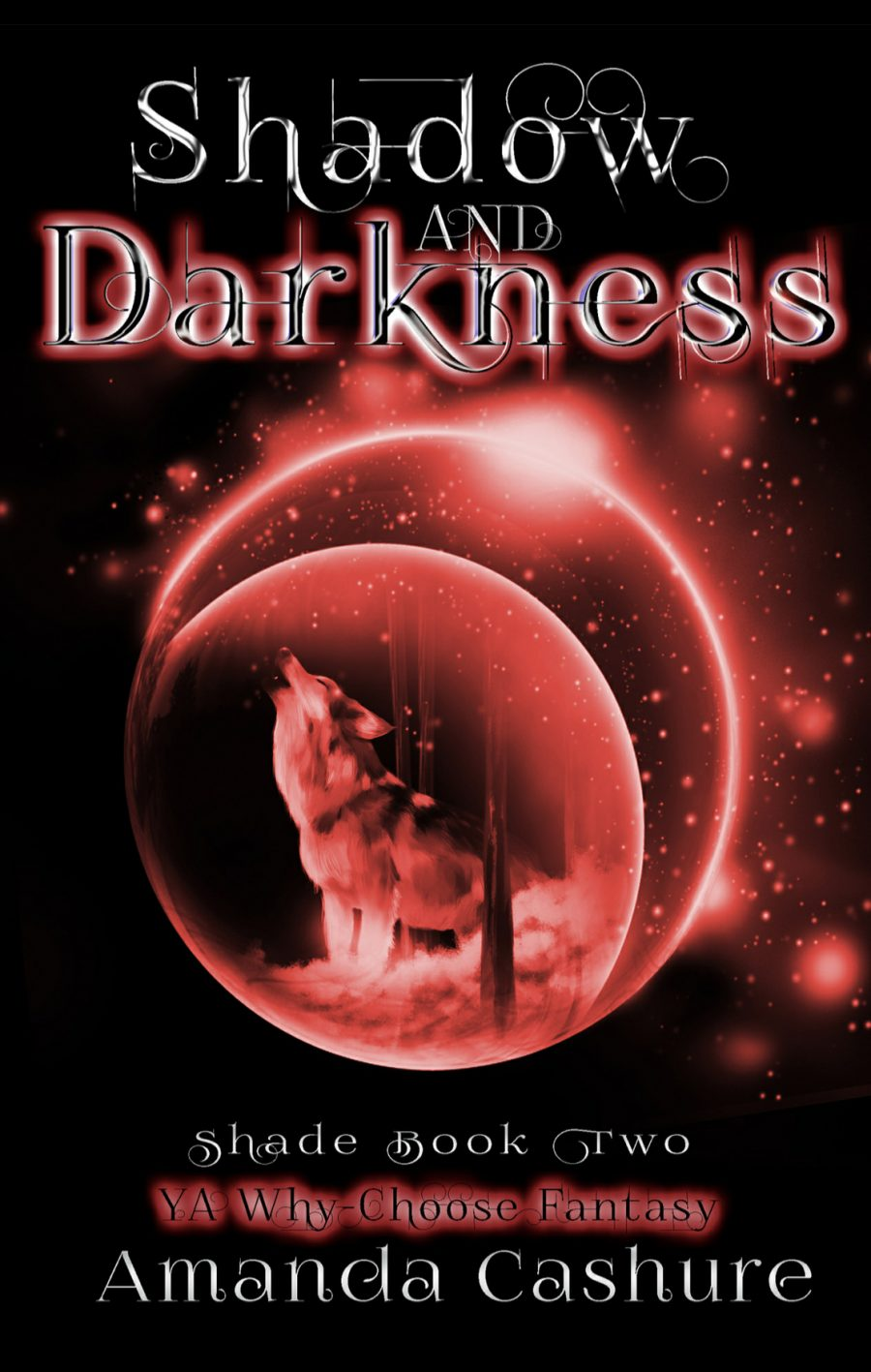 Shadow and Darkness by Amanda Cashure - A Book Review #BookReview #YA #RH #WhyChoose #Fantasy #KindleUnlimited #KU #4Stars