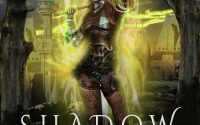 Shadow Warrior by Debbie Cassidy – A Book Review