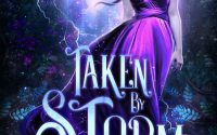 Taken by Storm by Elle Middaugh – A Book Review