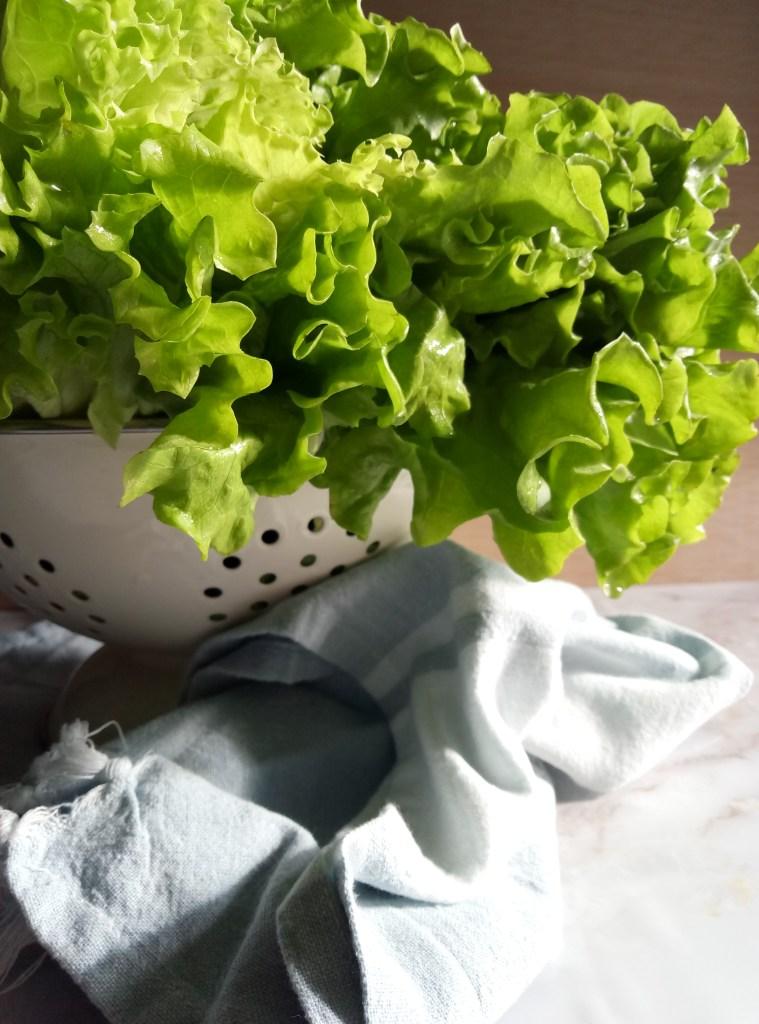 Lettuce Soup | booksandlavender.com