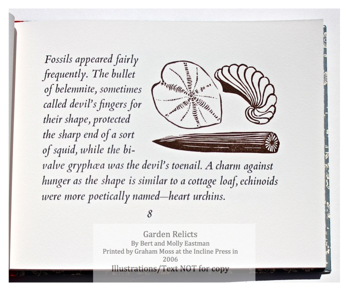 Garden Relicts, Incline Press, Sample Illustration #2 with Text