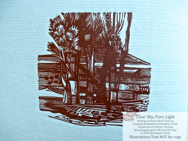 Clear Sky, Pure Light, The Penmaen Press, Wood engraving for 'River: Wildness and Civilization'