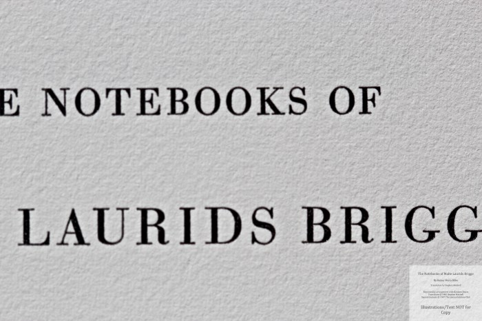The Notebooks of Malte Laurids Brigge, by Rainer Maria Rilke, Limited Editions Club, Macro of Title Page
