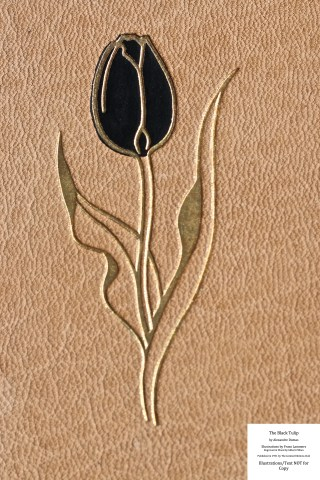 The Black Tulip, Limited Editions Club, Macro of Front Cover