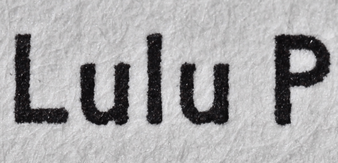 The Lulu Plays, Arion Press, 'Super' Macro of Introduction Text
