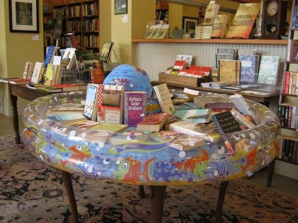 Annual Summer Reading Pool at A Novel Experience in Zebulon, GA