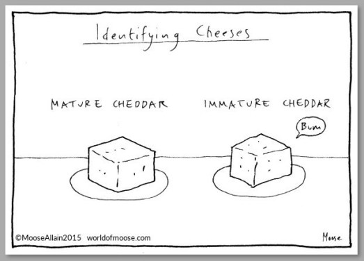 identifying_cheeses_grey_1024x1024