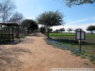 Wildseed Farms near Fredericksburg,TX | Books, Cupcakes, and Cats Chasing Chipmunks