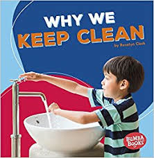 Book Cover Image for Why We Keep Clean