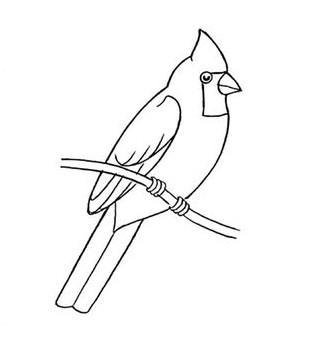 01. Как нарисовать птицу на ветке