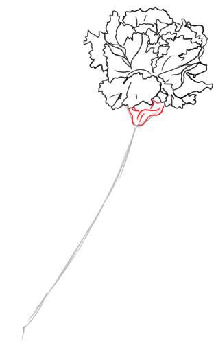 06. Как нарисовать гвоздику поэтапно