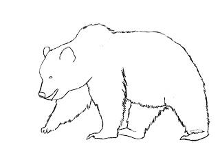 08. Как нарисовать медведя поэтапно