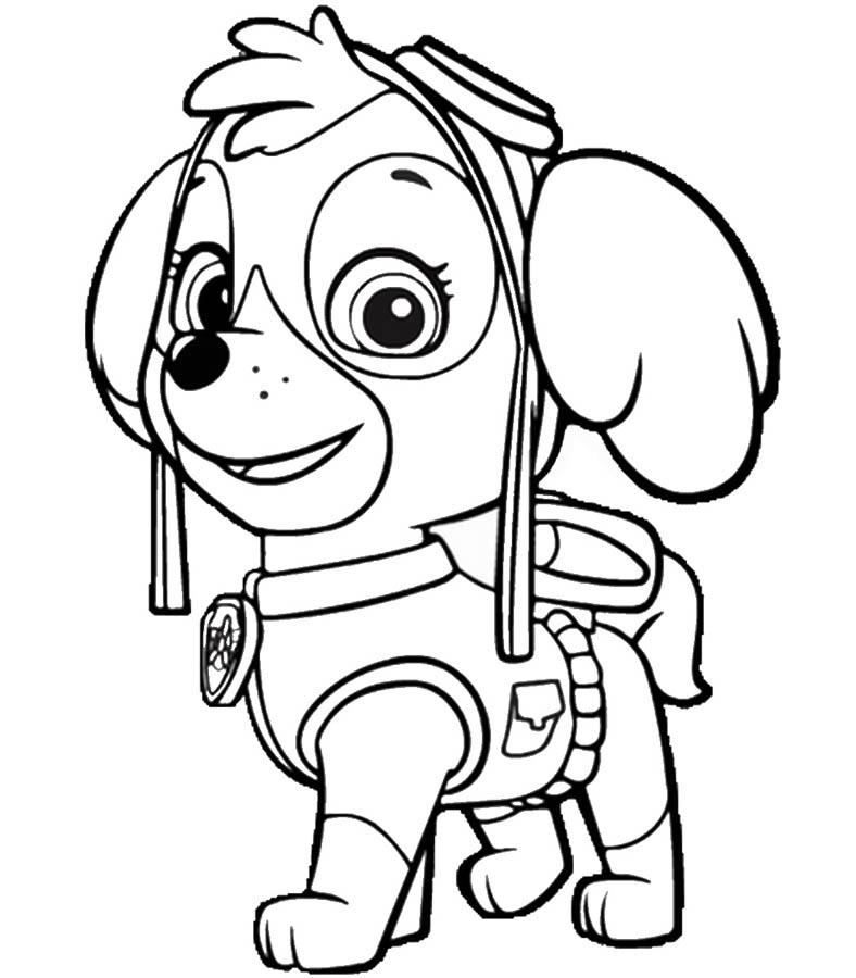 Раскраска щенячий патруль